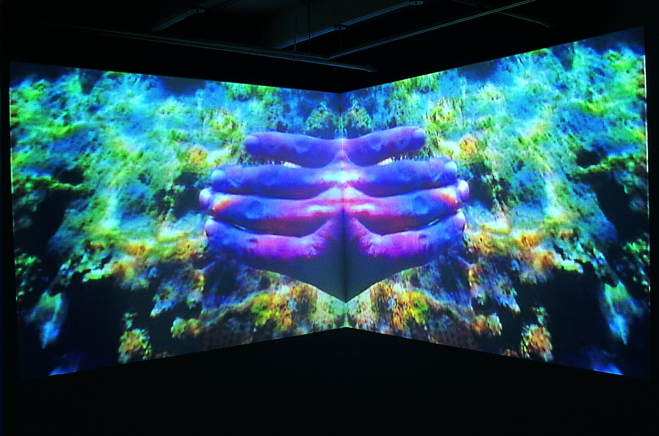 A screen shows a projected image of an underwater scene with fingers in the center. The image is mirrored along the vertical plane.