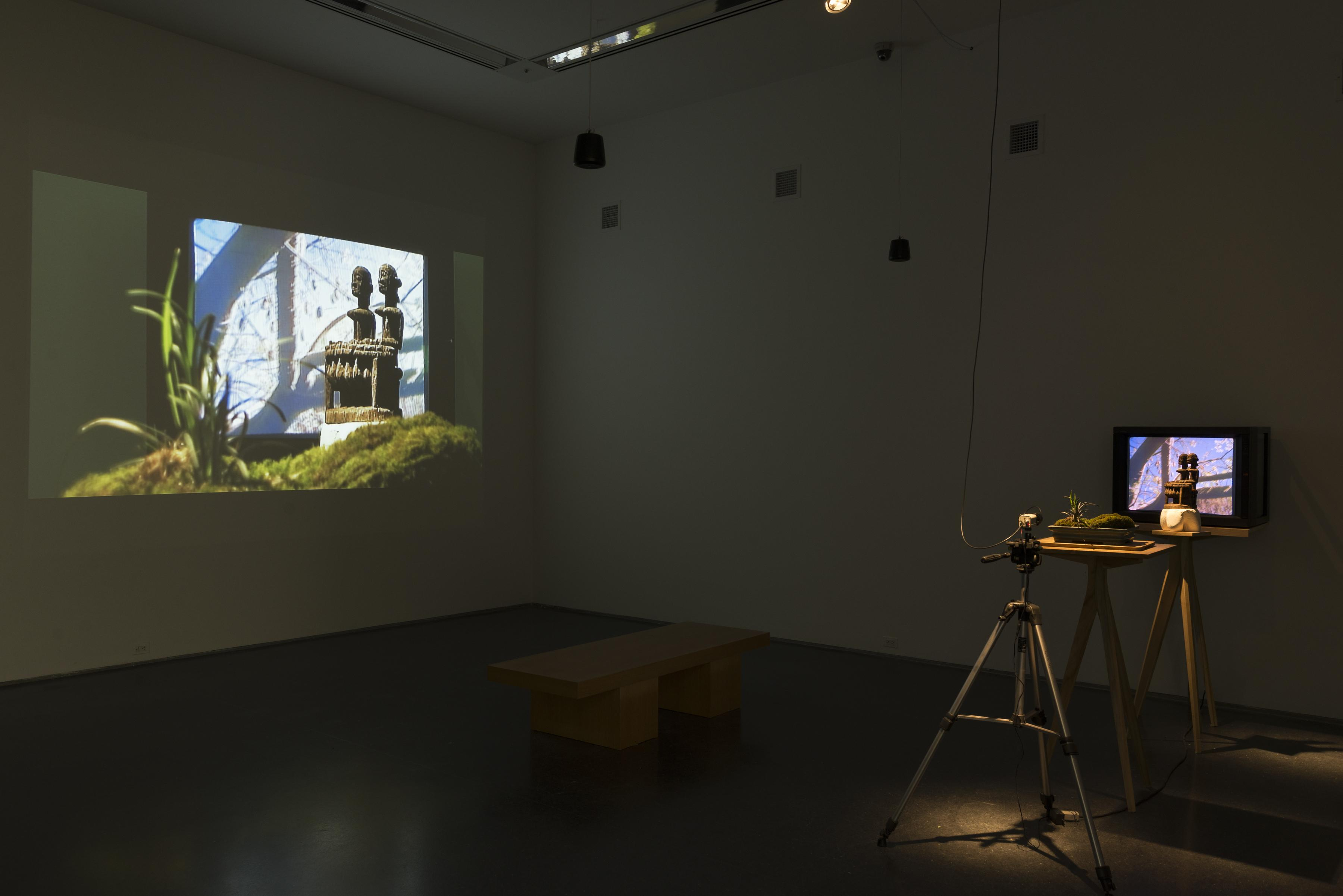 An image projected on the wall is created by three tripods in a row: the first holds a camera, the second a miniature landscape, and the third a small sculpture in front of a monitor depicting tree branches and the sky.