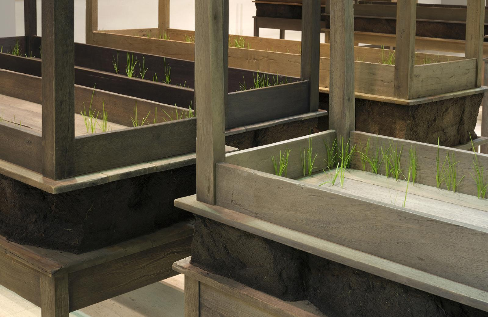 A close-up image shows several rectangular wooden tables and secondary, identical tables stacked upside-down on top with thin blades of green grass poking out of them.