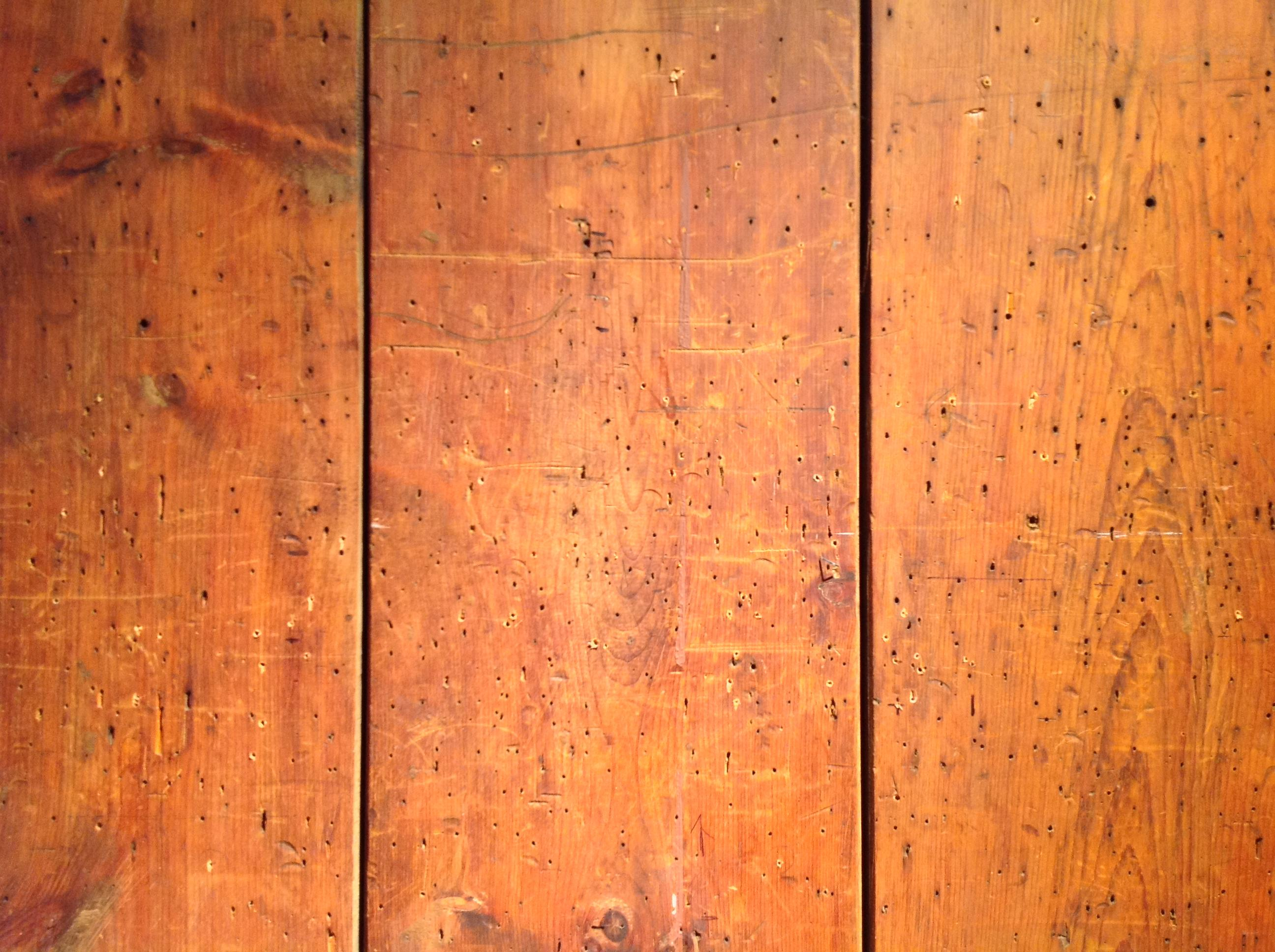 Three wooden boards line next to one another and split the image into thirds. The boards are flecked with hundreds of tiny holes and appear worn. They are a vibrant mixture of brown and orange.
