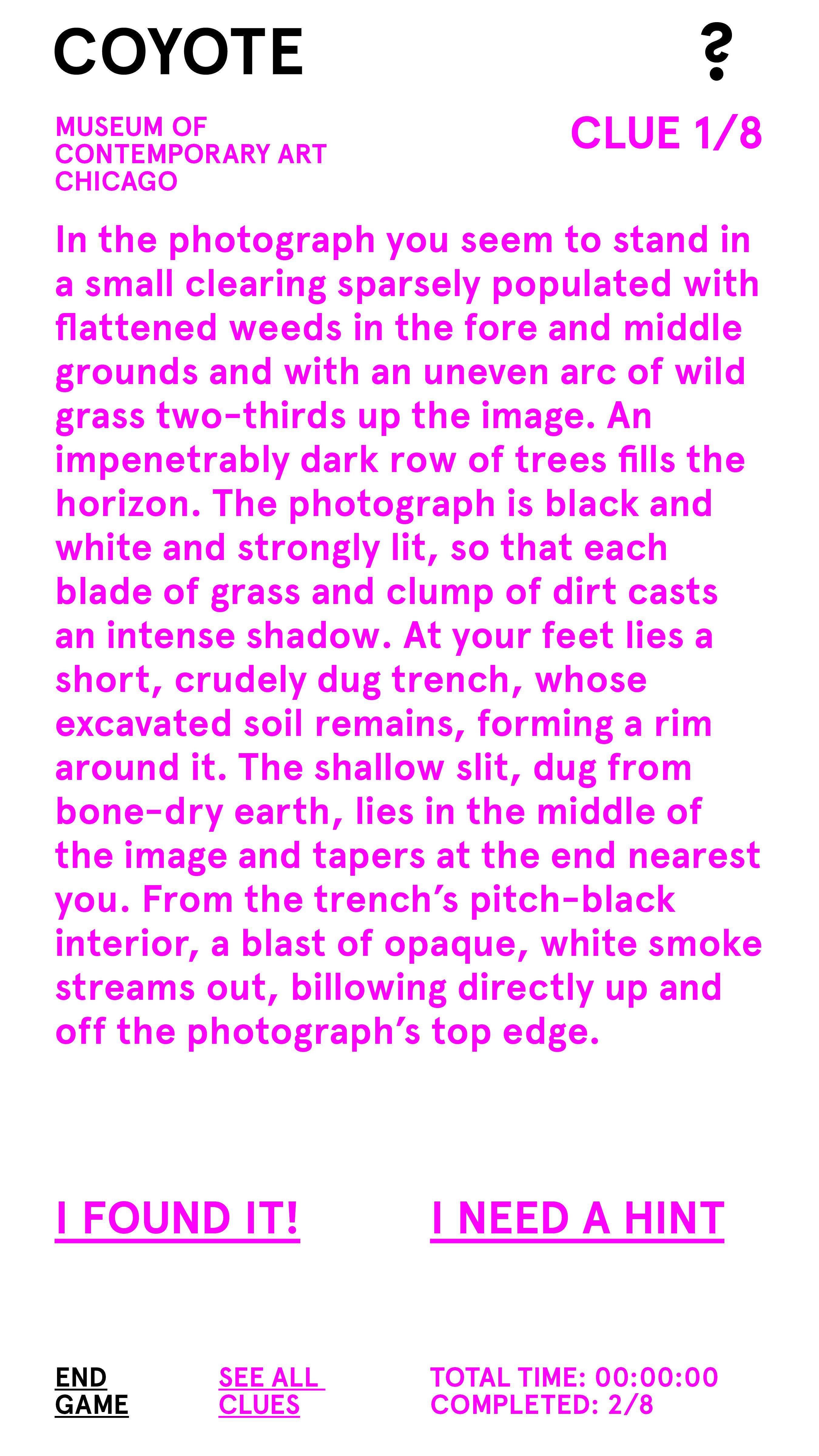 """A block of vivid pink text labeled """"CLUE 1/8"""" describes a photograph in great detail."""